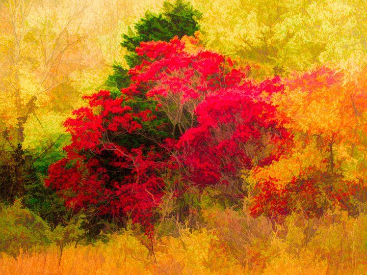 Autumn Burn - Artwork by Bobby Allan