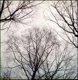 Original Color Film Photograph