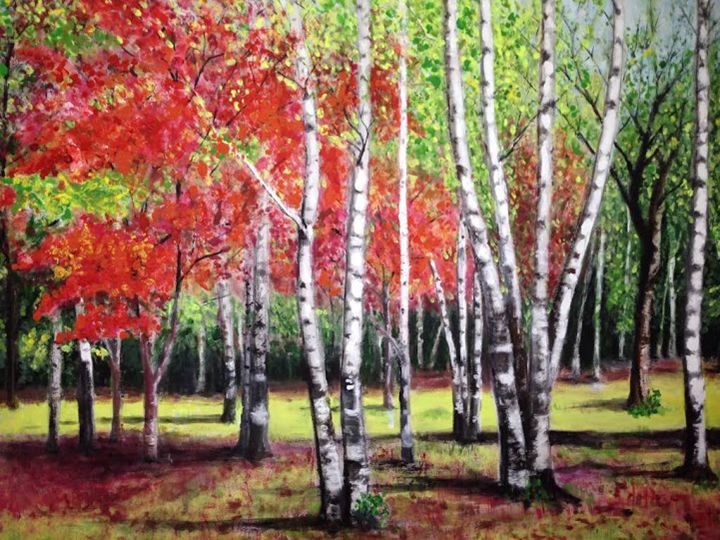 Fall Foliage - Magic-Oasis