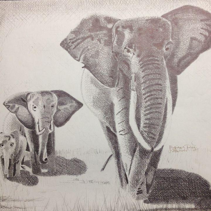 Elephants - Marinez Ruiz