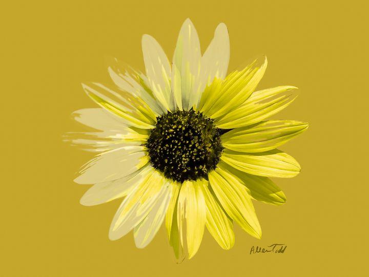 Sunflowers Portrait - Allen Todd