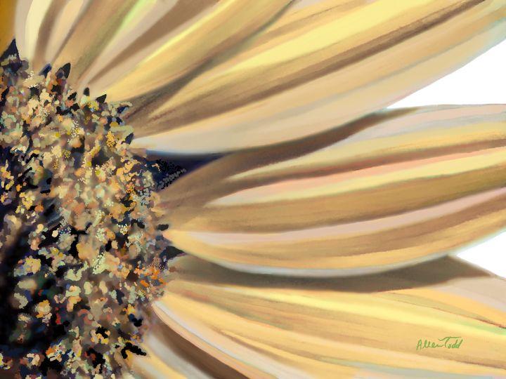 Morning light- Sunflower series 2 - Allen Todd