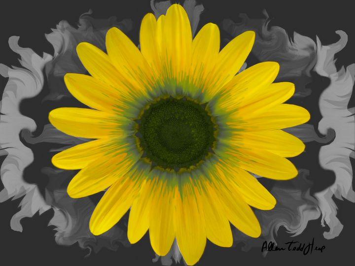 Beauty from the Sun - Allen Todd