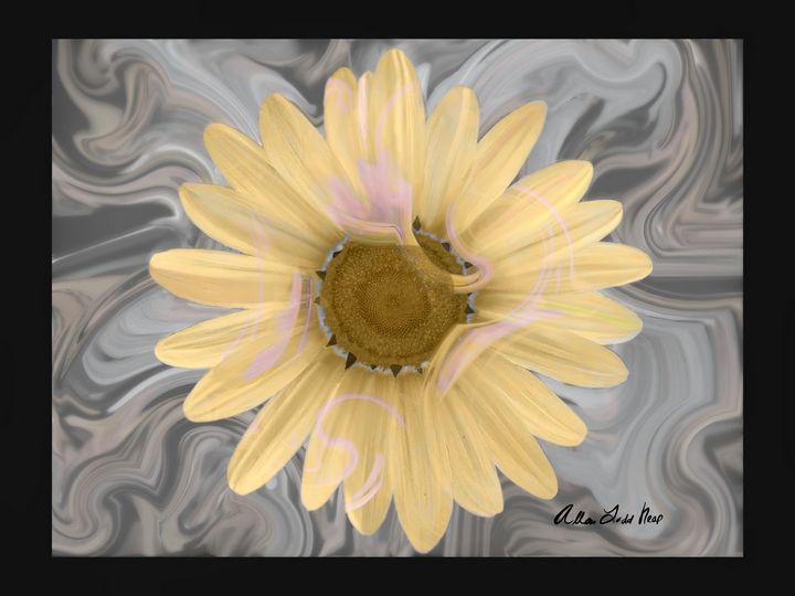 Sunflower Power - Allen Todd