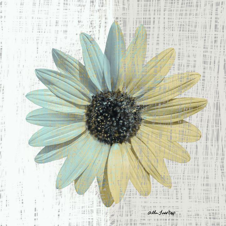 Vintage Flower - Allen Todd