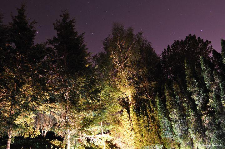 Night Sky North West - John Gonzales PhotoArt