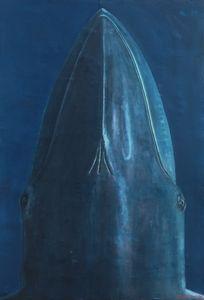 Blue Whale Portrait
