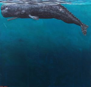 Sperm Whale Preparing to Dive