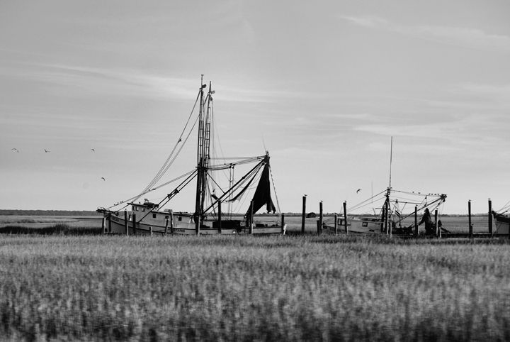 The Shrimp Boat - Paige Rogers Photography