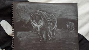 White charcoal rhino