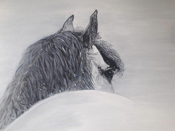 'REAR VIEW' - Denise Coyle