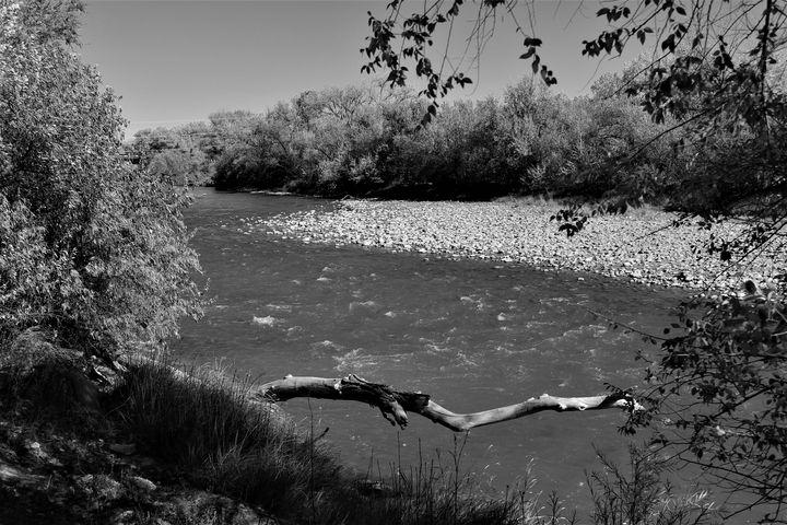 Animas River B&W - Shelly Boren Photography