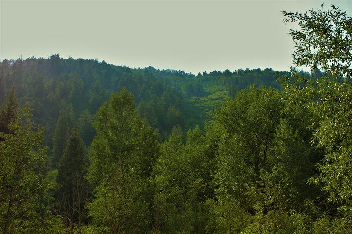 La Plata Mountains - Shelly Boren Photography