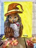 Wizard Owl Acrylic Painting