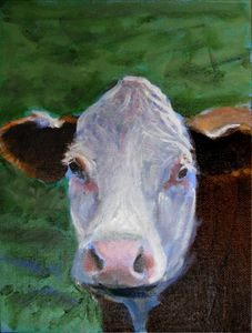 Cowbaby - David Zimmerman Fine Art