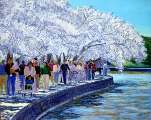 Cherry Blossom Parade - David Zimmerman Fine Art