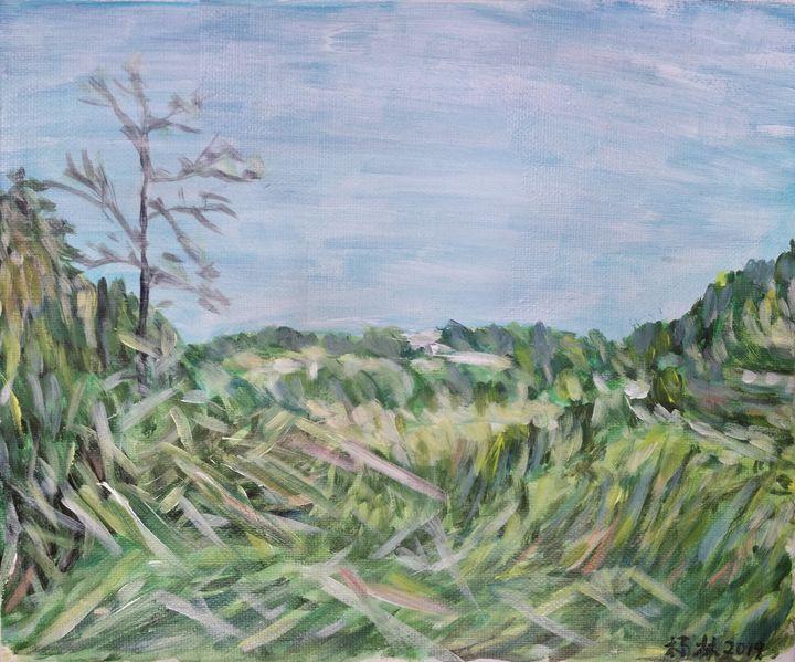 Grassy hillside - lin
