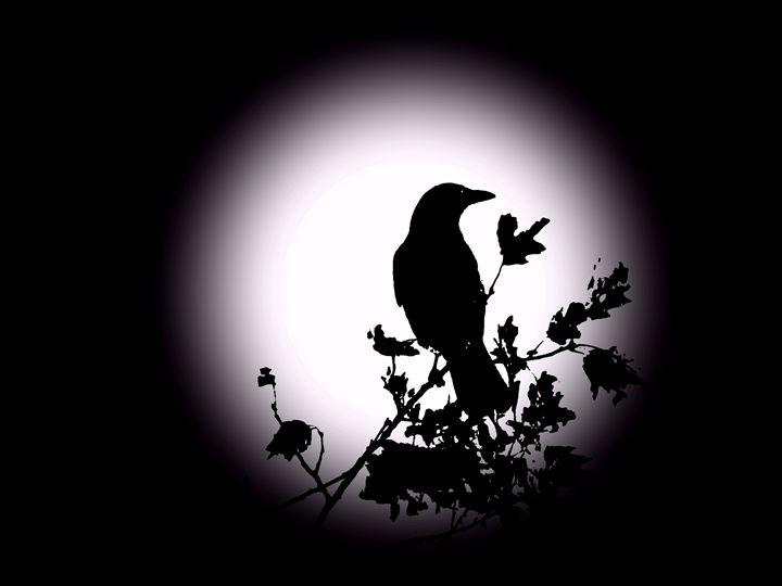 Blackbird in Silhouette - David Dehner