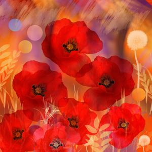 Red as poppies can be