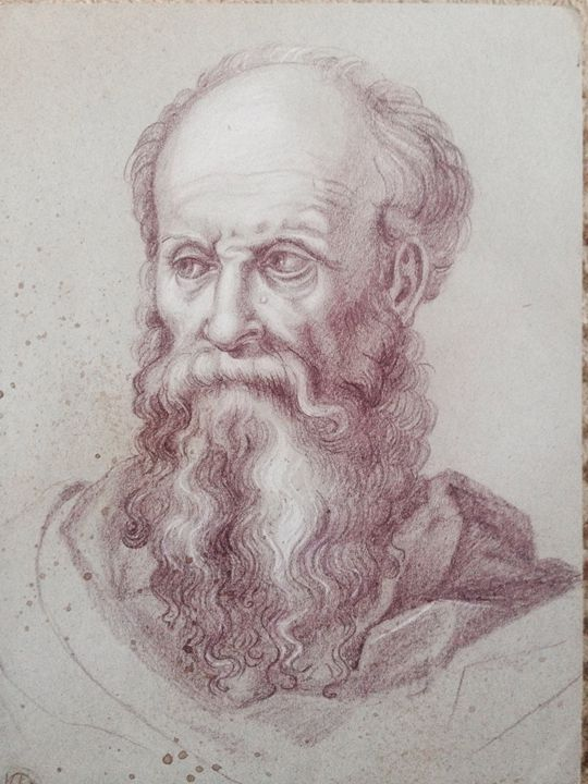 Head of a Bearded Man Facing Right - Old Masters gallery