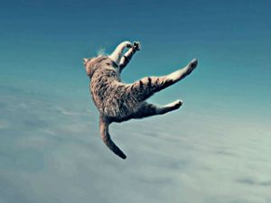 Le Chat Volant - Mr STRANGE (JM GITARD)