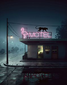 FLAMINGO MOTEL - Mr STRANGE (JM GITARD)