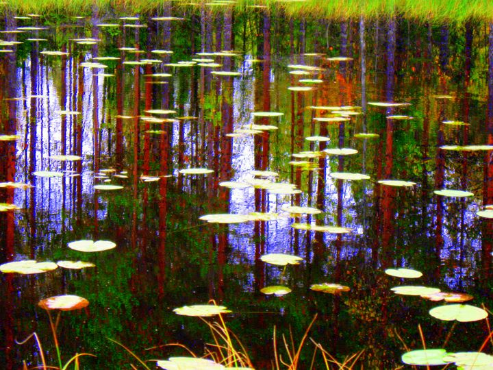 Fall Pond - paulihyvonen