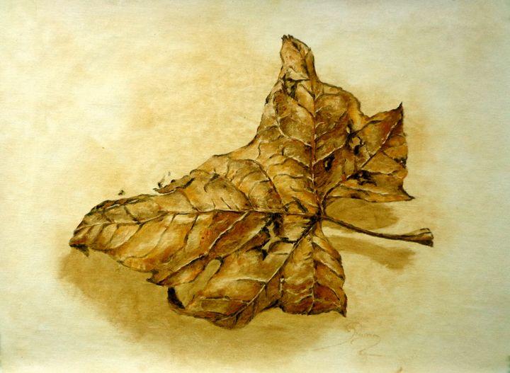 fallen plane tree leaf, oil, B3 - rogerioarte