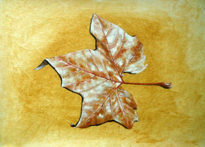 plane tree leaf, oil, B3 - rogerioarte