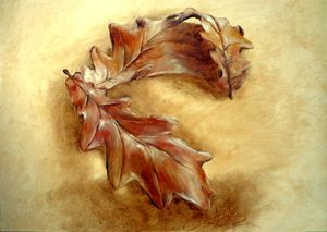 oak leaves, oil, B4