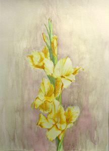 gladiolus, watercolor, A4 - rogerioarte