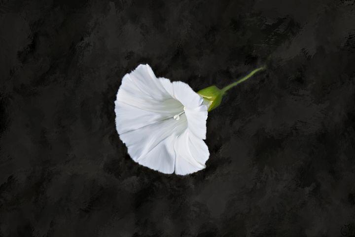 Loner Flower Digitally Handpainted - Hunart Pixels