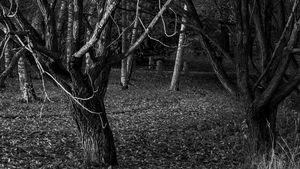 Childhood Memories - Juha Roisko