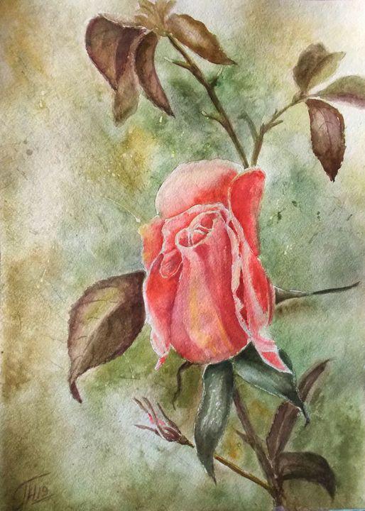 Rose 2 - Nina Polunina