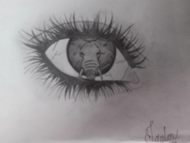 elephant eye - Art