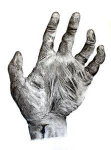 Weathered Hand