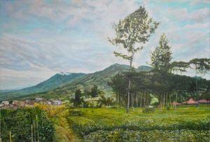 """Gunung Sindoro Agrowisata Tambi"""