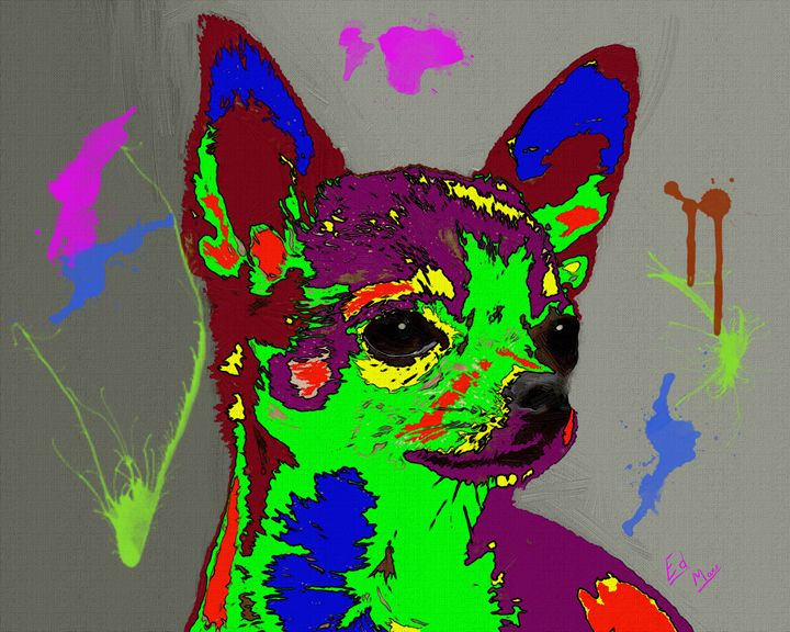 Colorful Chihuahua - Ed Mace
