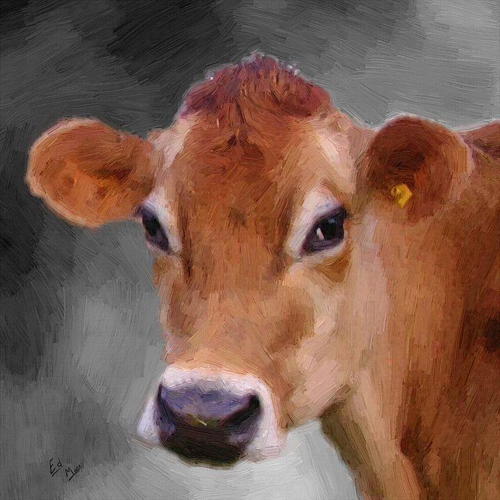 Cow Sweet Heart - Ed Mace