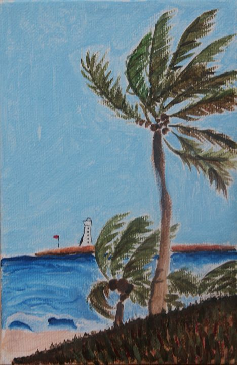 Palm trees - Gallery