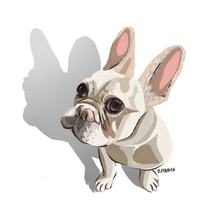 Frenchie - Esther Francis Artworks