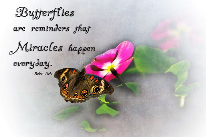 Butterfly Miracles - Persinger Creations