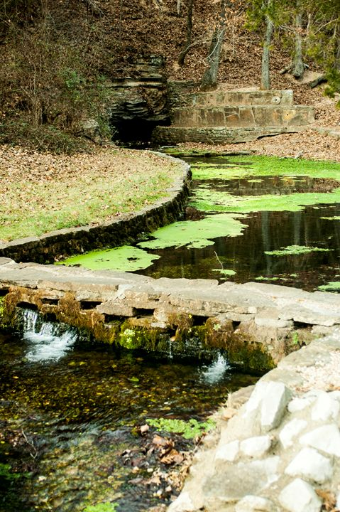 Ozark Hidden Beauty - Persinger Creations