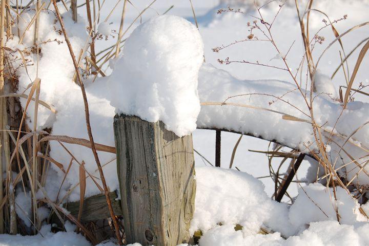 Snow - Persinger Creations