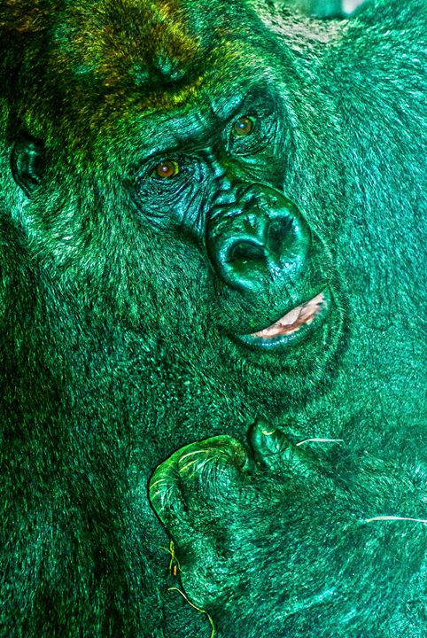 Gorilla - Persinger Creations