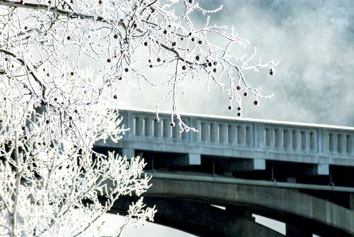 Frozen Fog - Persinger Creations