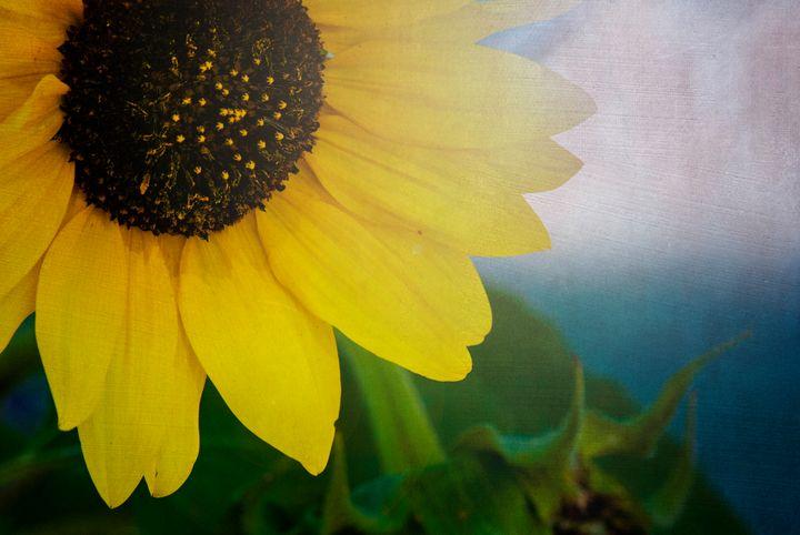 Textured Sunshine - Persinger Creations