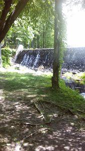 Waterfall On Kings Mountain - Cynthia L. Thompson