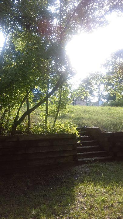 Backyard - Cynthia L. Thompson