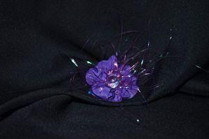 Devine flower